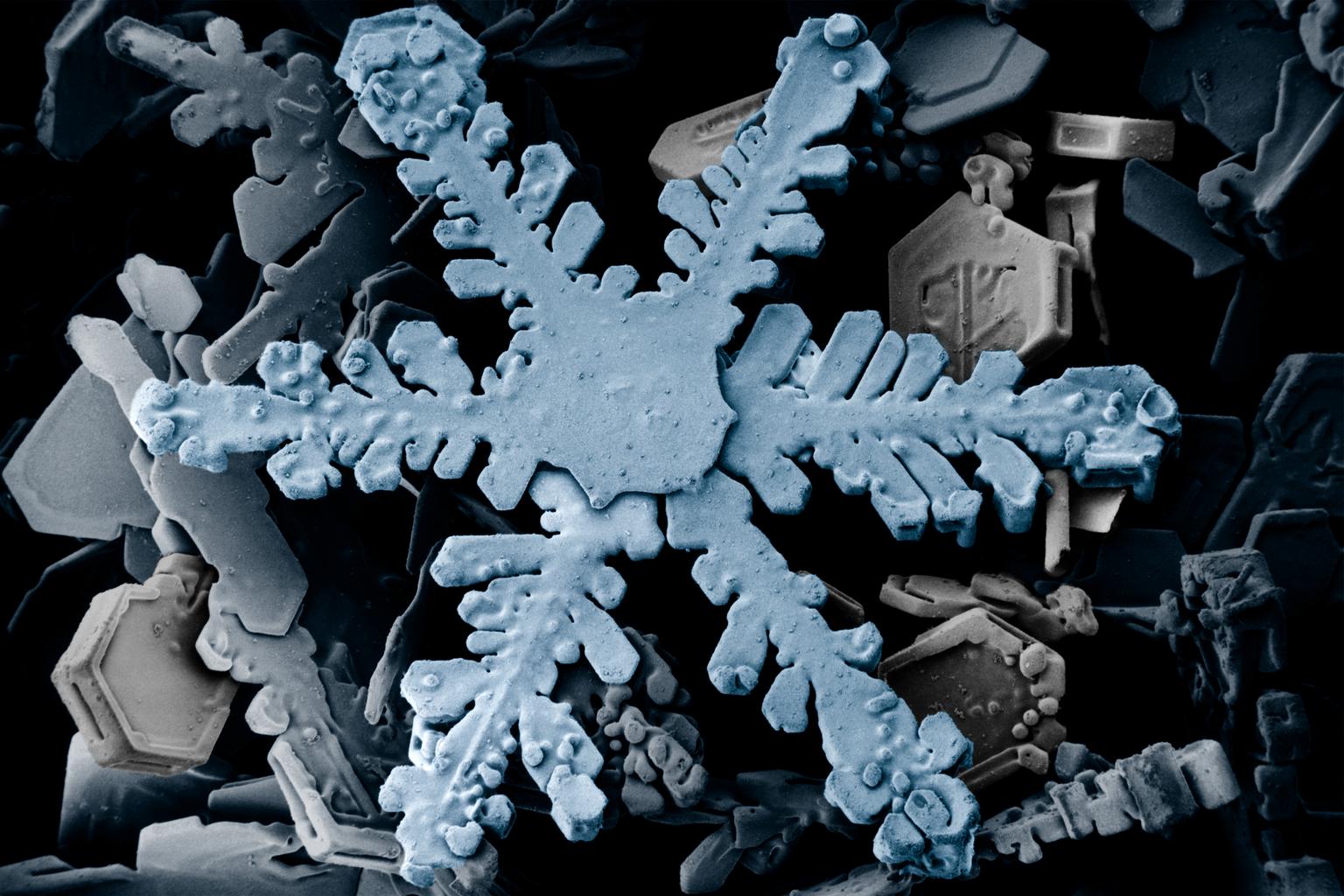 Een sneeuwkristal
