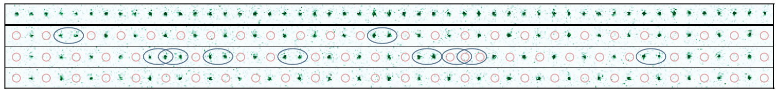 De 51 qubits van de quantumsimulator in MIT