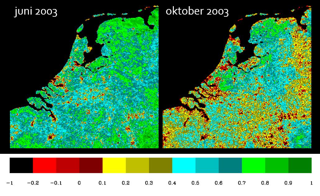 NDVI-kaart van Nederland in 2003